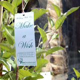 Wedding Wish Tree Ideas