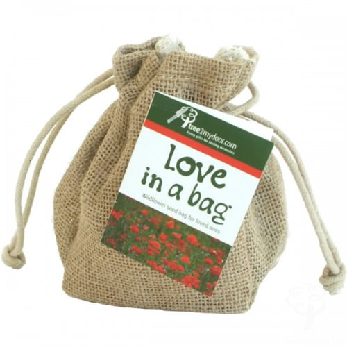 Love in a Bag Wildflowers