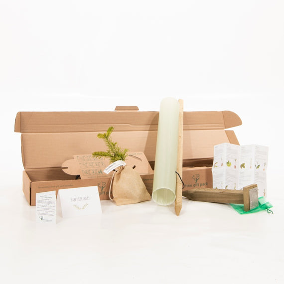 Buy a Birthday Tree Gift Pack