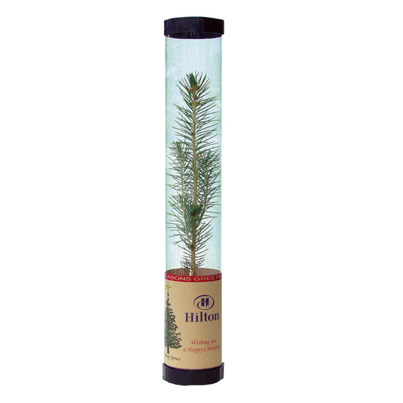 Promotional trees in tubes