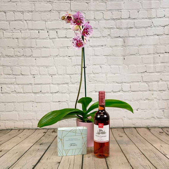 Orchid Plant with Rosé Wine and Chocolates