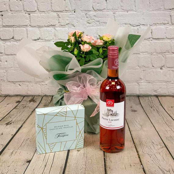Pink Rose Plant with Rosé Wine and Chocolates