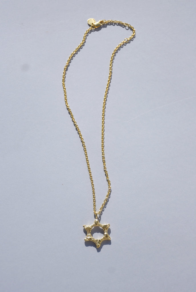 GOLD SEAL OF SOLOMON NECKLACE