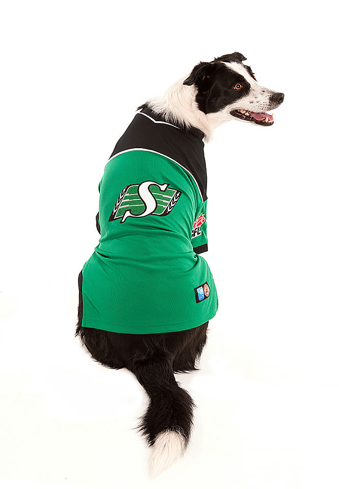 Saskatchewan Roughriders CFL Dog Jersey