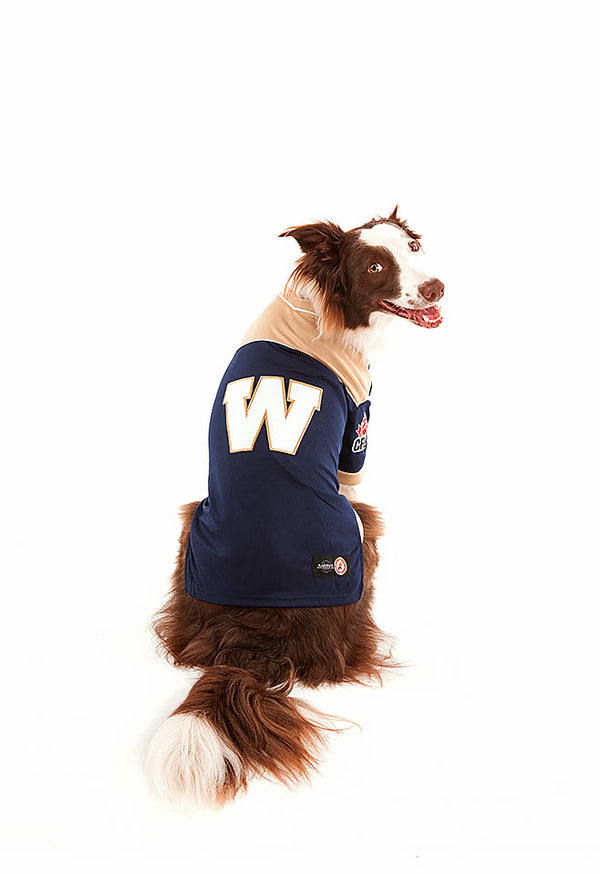 Winnipeg Blue Bombers CFL Dog Jersey
