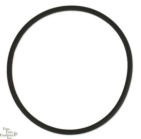 AquaC O-Ring for Remora Pro/Urchin Pro