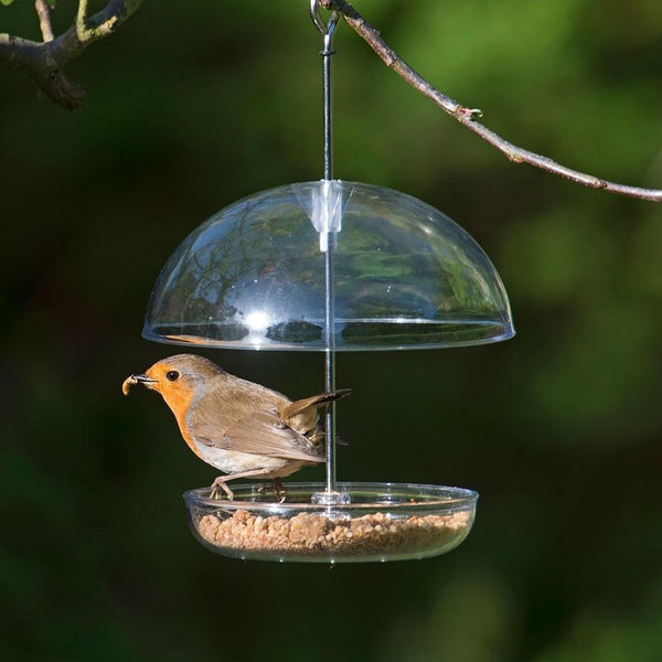 I Love Robins Feeder  -  Birdcare