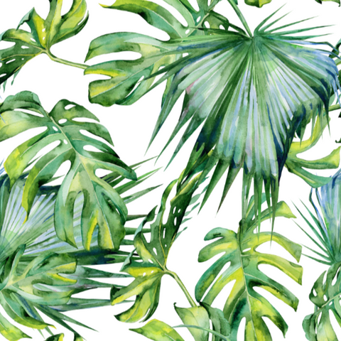 Tropical Rainforest - Wallpaper Sample