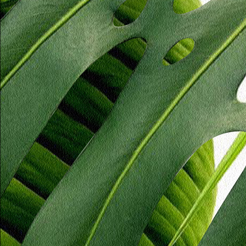 3D Rainforest Banana Leaves - Wallpaper Sample