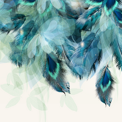 Teal Feathers Mural Wallpaper(SqM)
