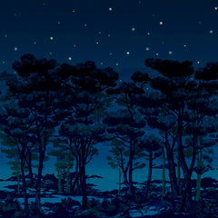 The Magical Forest in the Night Mural Wallpaper (SqM)