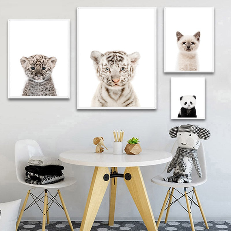 Baby Animal Portrait Collection