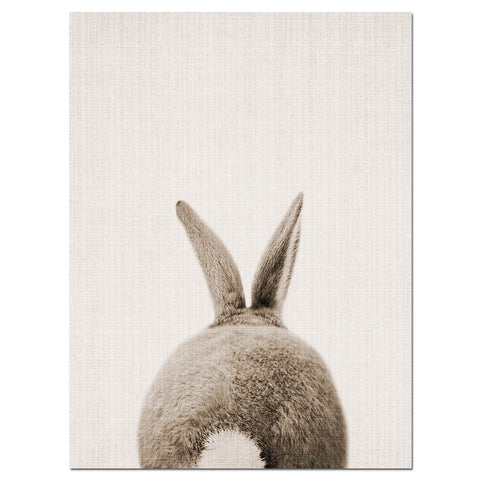 Rabbit Bunny Tail Canvas