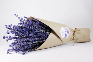 Kelso Lavender, Dried English Lavender Bouquet, Royal Velvet, 14 inches, 200 stems, Packaged