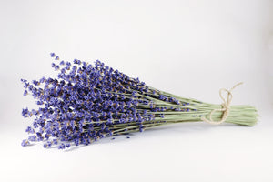 Kelso Lavender, Dried English Lavender Bouquet, Royal Velvet, 14 inches, 200 stems