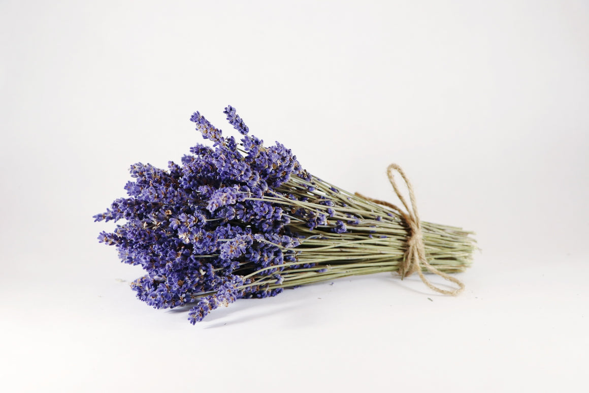 Kelso Lavender, Dried English Lavender Bouquet, Super Blue, 7 inches, 200 stems