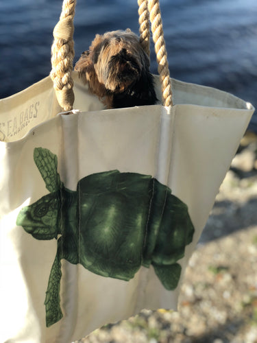 Green Turtle Seabag