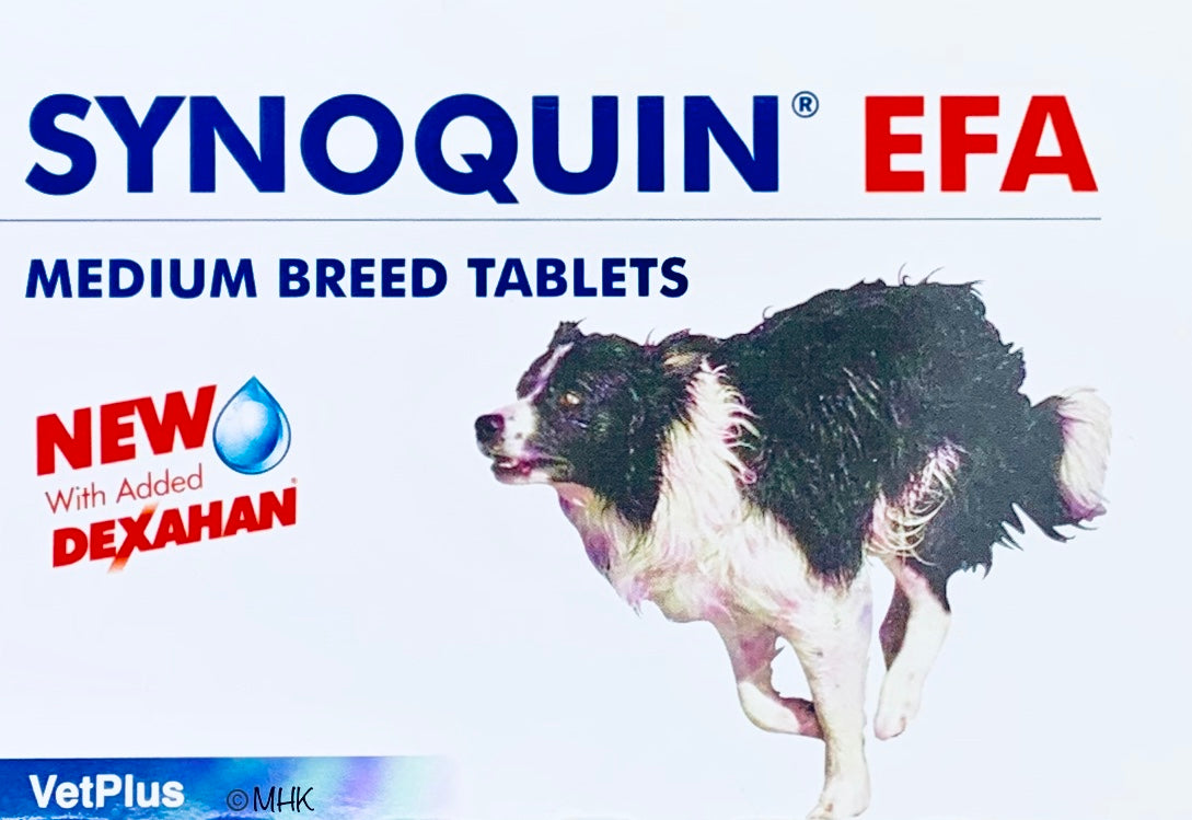 Synoquin EFA Medium Breed Makutabletit 120 tabl.