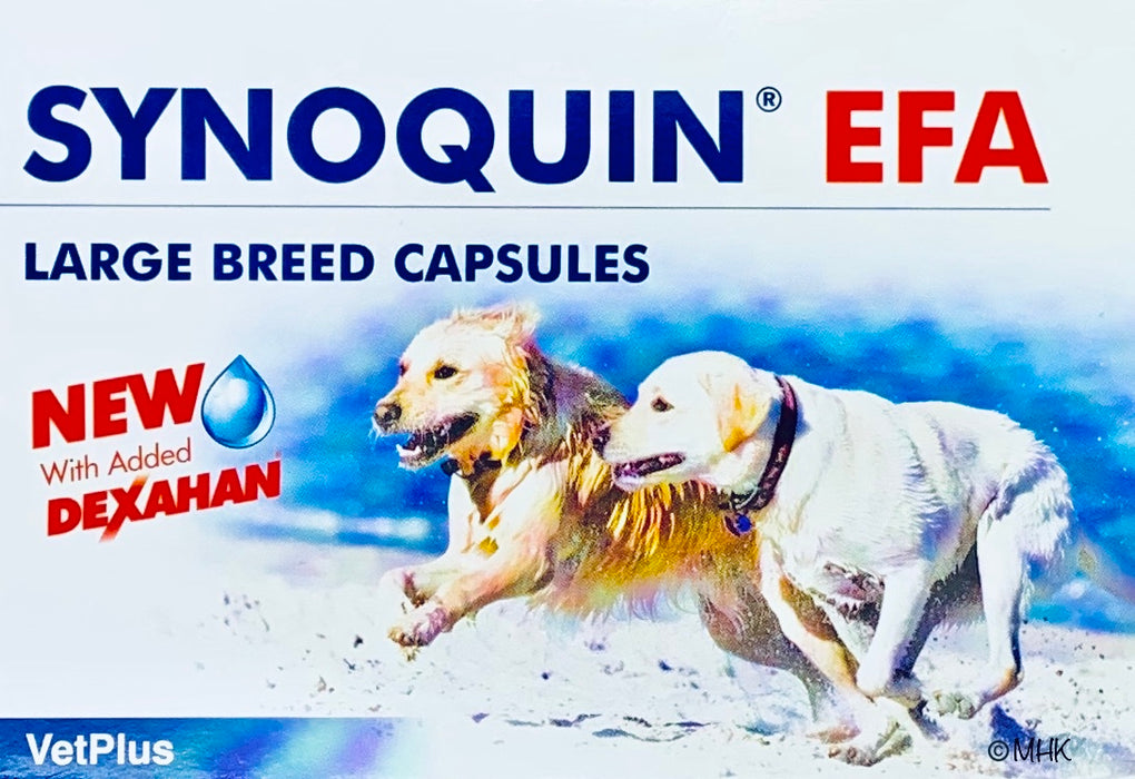 Synoquin EFA Large Breed kapselit 120 kaps.