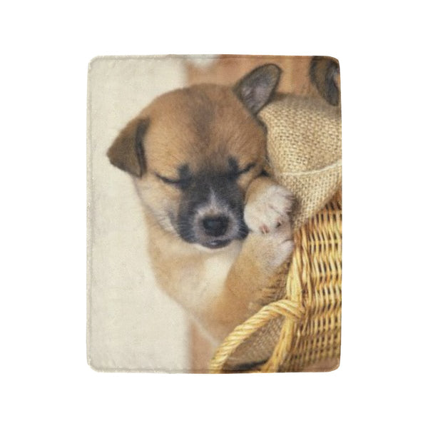 Pet Picture Blankets