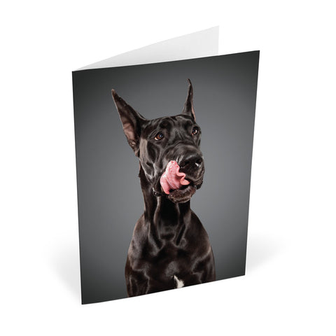 Knock Knock Lick Dogs Notecards (Large)