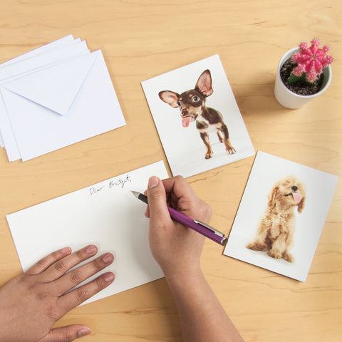 Lick Puppies Notecards by Ty Foster