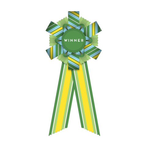 Knock Knock Winner Personal Award Paper Ribbon