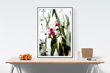 Load image into Gallery viewer, 'Crisp' Photo Print
