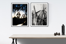 Load image into Gallery viewer, 'Tree Bark' Photo Print *Limited Edition A2