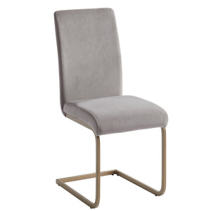 Savion Side Chair, set of 2, in Grey