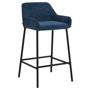 Baily 26'' Counter Stool, set of 2 in Blue