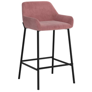 Baily 26'' Counter Stool, set of 2 in Dusty Rose