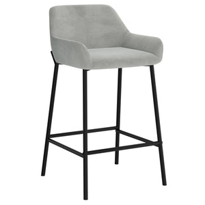Baily 26'' Counter Stool, set of 2 in Grey