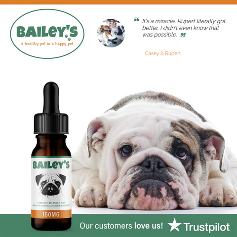 Bailey's Full Spectrum Hemp Oil For Dogs w/ 150MG Naturally Occurring CBD