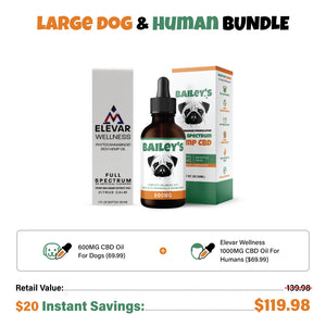 Large Dog & Human Bundle