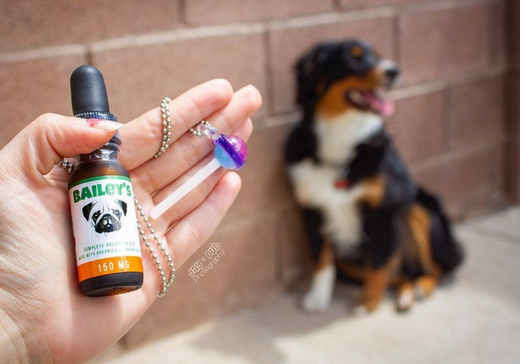 Limited Time, Limited Supply FREE 150MG Dog Bottle Offer! (Just Cover S&H)