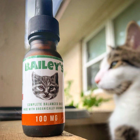 Image of Bailey's Full Spectrum Hemp Derived CBD Oil For Cats | 100MG 15ml Tincture