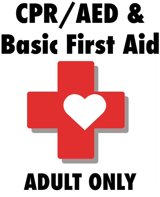 CPR/AED and Basic First Aid  for Adult Only (Online Learning with Remote or Local Verification)