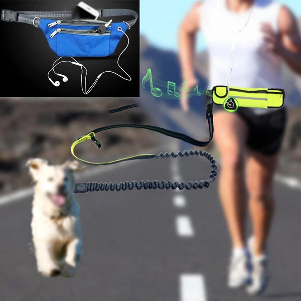 The racing leash and belly bag
