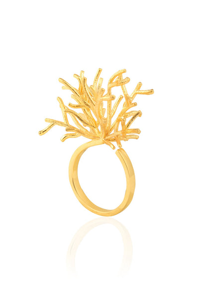 Branched Ring
