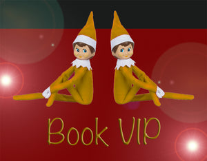 VIP Christmas Eve-Eve Visit