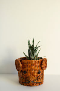 Wicker Mouse Plant Pot