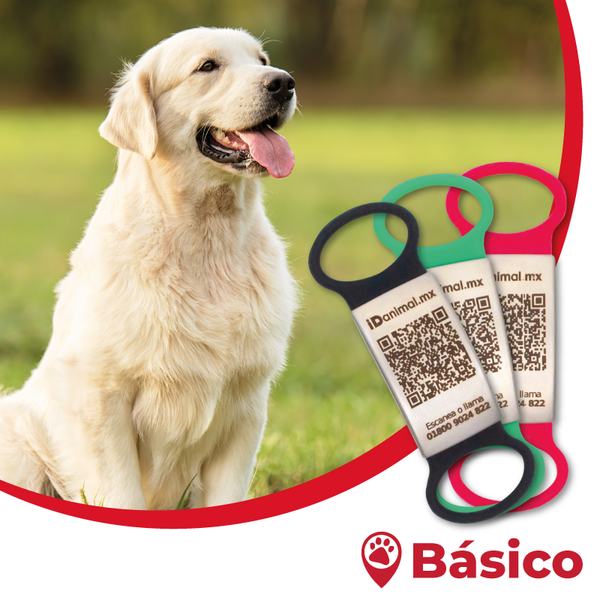 Plan iD animal - Pet Care Básico