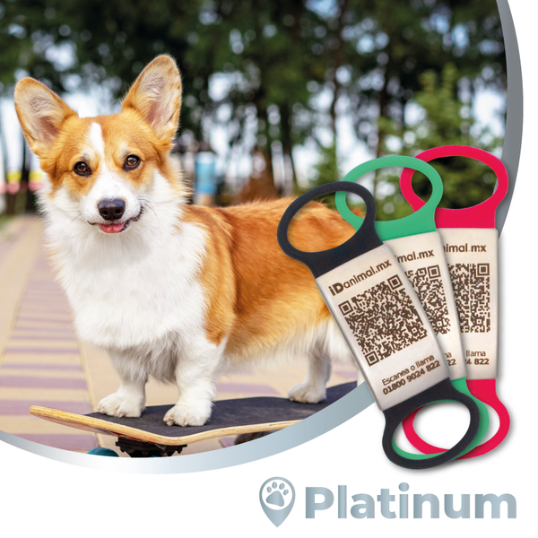 Plan iD animal - Pet Care Platinum