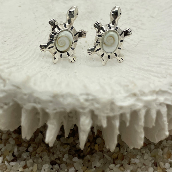 Shiva Eye Turtle Stud