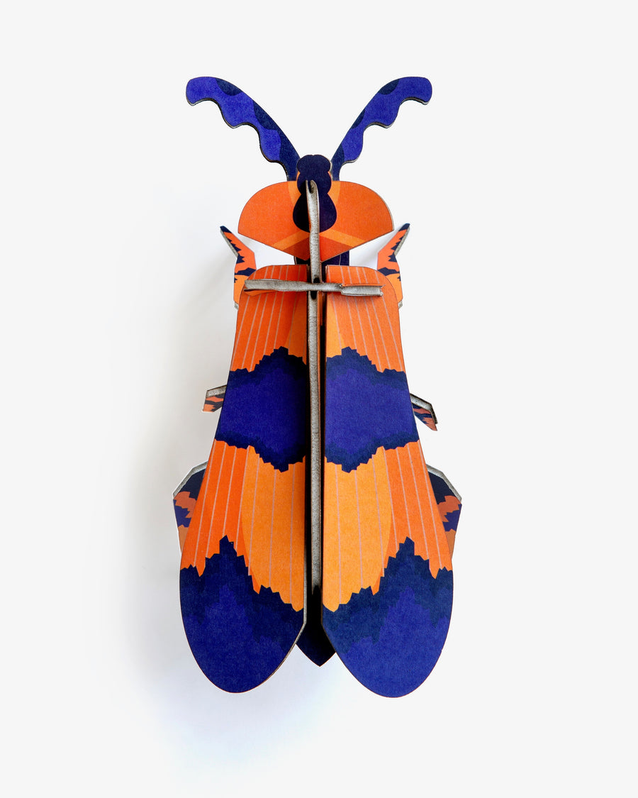 Muur Deco - Winged Beetle