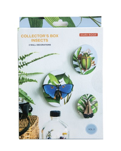 Muur Deco - Collector's Box Insects vol. 2
