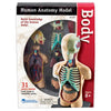 Human Body Anatomy Model, 31 Pieces - Item 4SS-LER3336