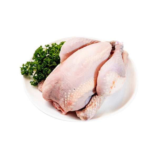 French Chilled Organic Black  Chicken (PC / 1.3KG)