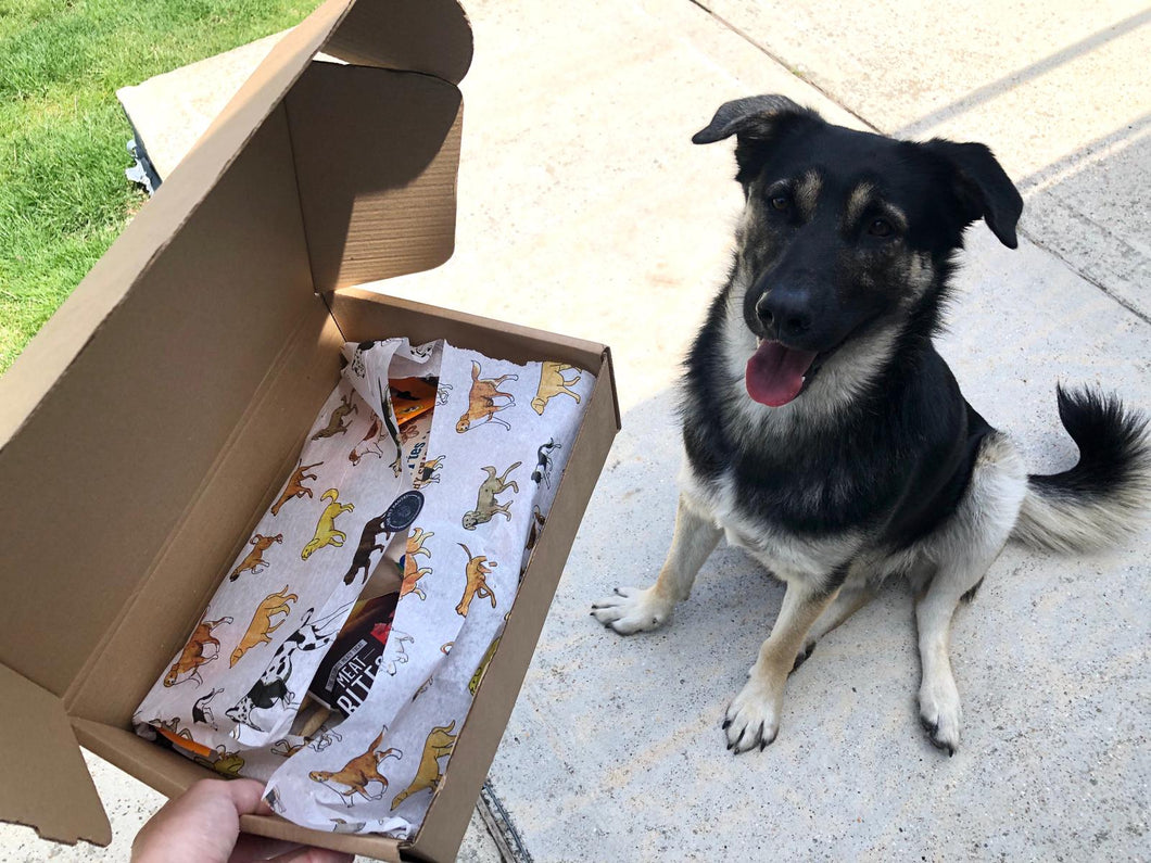 Doggo Deli Birthday Box